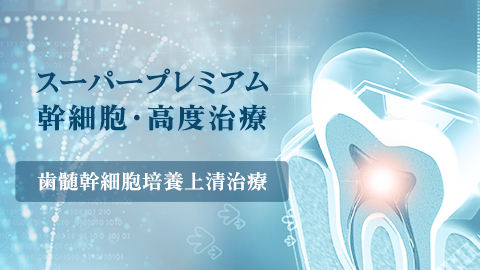 スーパープレミアム幹細胞・高度治療「歯髄幹細胞治療」